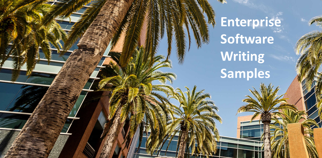 Enterprise Software Writing Samples