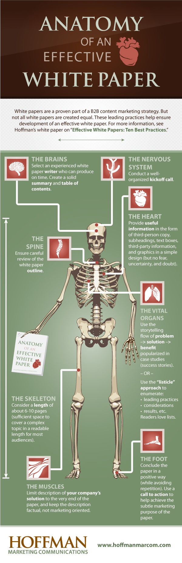 Anatomy of an Effective White Paper Infographic